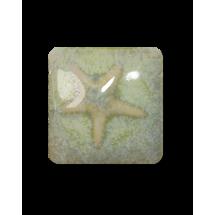 MS-229 Sea Grass Glaze...