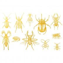 Sır Üstü Dekal Gold Bugs 1...