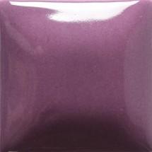 FN-36 Grape Foundation...