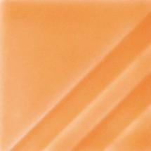 FN-207 Orange Slice...