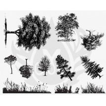 DSS-110 Botanical - Trees &...